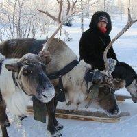 Природно-этнографический комплекс в поселке Горнокнязевск :: Tata Wolf