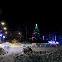 2 часа ночи...Тишина... Только скрипит снег под валенками Деда Мороза! ))) :: Виталий Левшов