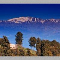 С видом на гору Хермон(Израиль) :: михаил