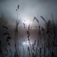 ночные пляски :: Дмитрий Нагваль Серба