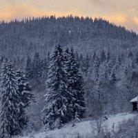 у леса,на опушке....стояла избушка.... :: Ольга Cоломатина
