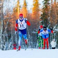 Хибинская гонка 2014 (5) :: Александр Неустроев