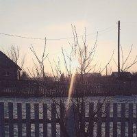 Прекрасная Зима :: Елена Протас