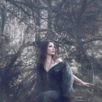 в лесной глуши :: Дарина Сваровски
