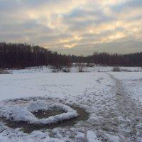 IMG_7574 - По-декабрьски солнечно :: Андрей Лукьянов