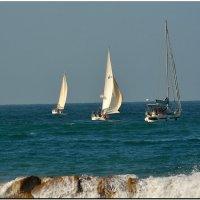 В море... :: Leonid Korenfeld