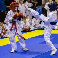 Соревнования по рукопашному бою :: Александр Малышев