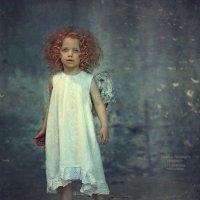 Ангелы :: Надежда Шибина