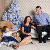 Семейный... :: Елена Правосудова