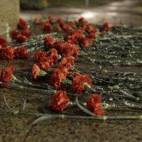 Слёзы памяти :: Андрей Rudometov