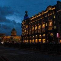 Санкт Петербург в ночи :: НАДЕЖДА Солодовник