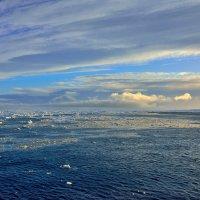 Море Уэдделла :: Алексей Романов