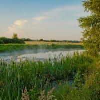 Утро над лесным озером. :: Виктор Евстратов