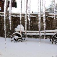 Ледяные жалюзи :: Елена Шемякина