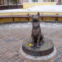 Памятник бездомной собаке. :: Elena Izotova