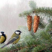 Скоро Новый Год !!!!!! :: Hаталья Беклова