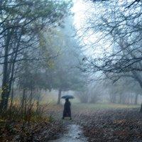 Осенний дождь :: Nina Streapan