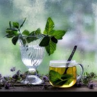 Мятный чай :: Natali-C C