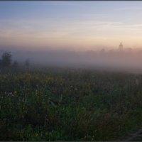 Прячась за туманом :: Надежда Лаврова