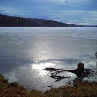 Замершее озеро :: оксана