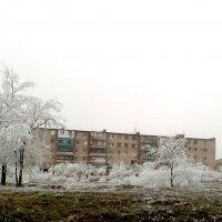 возле университета :: Маргарита Орловская