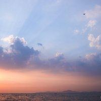 закат :: Алла Мамаева