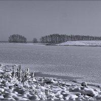 Замёрзшее озеро :: Виктор Четошников