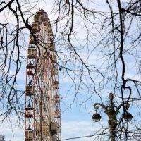 в зимнем парке колесо... :: Олег Лукьянов