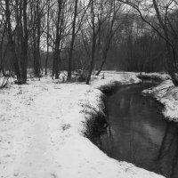 IMG_7664 - Черная речка :: Андрей Лукьянов