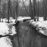IMG_7668 - Черная речка :: Андрей Лукьянов