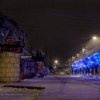 Скоро Новый год :: Владимир Мужчинин