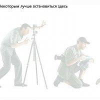 фото с интернета) :: lev