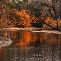 Осенний парк (парк Екатерингоф) :: Юрий
