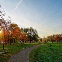 Пулковский парк. :: Владимир Гилясев