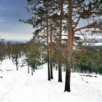 Весь снег на склоне. :: Сергей Адигамов