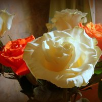 случайный кадр, чужие розы... :: Галина Филоросс