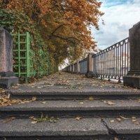 Осень в Летнем саду :: Valeriy Piterskiy