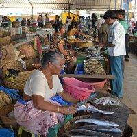Индия. Калангут. Рыбный рынок :: Владимир Шибинский