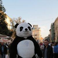 Родной город-933. :: Руслан Грицунь
