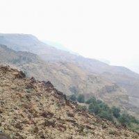 300 метров над уровнем Мертвого моря. :: Жанна Викторовна