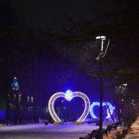 Вечер голубого снега :: Ольга