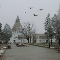 """Вид на башню """"Красные ворота"""" из серии Зимние виды Астраханского кремля :: Алена Рыжова"""