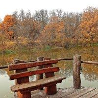 Одинокая скамейка :: Лидия (naum.lidiya)