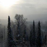 МЕТЕЛЬ :: Виктор Корсуков