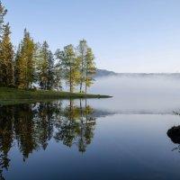 Утро на Телецком озере :: Ольга Овчинникова