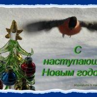 Спешим, летим поздравить с наступающим всех профи и, конечно, начинающих!!! :: Маргарита N