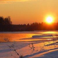 Зимний закат :: Павлова Татьяна Павлова