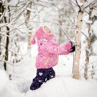в зимнем лесу.... :: Сильвия Михеева