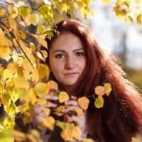 Осенняя прогулка :: Алексей Шалунов