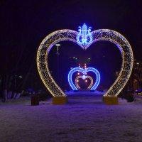 В сердце Мурманска :: Ольга